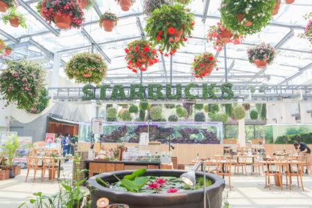 日本初の植物園のスタバ